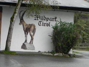 wildpark-tirol-1